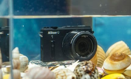 Nikon AW1
